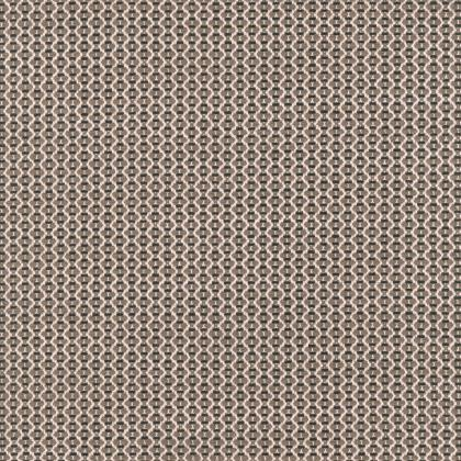 Broderie - TAUPE FIN
