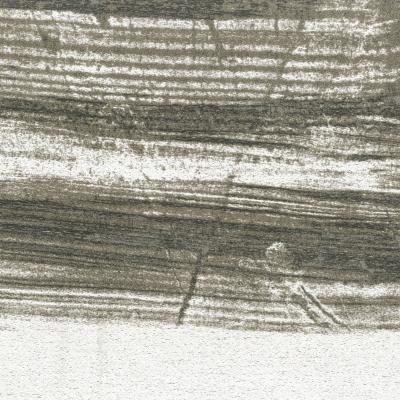 30163 Rembrandt