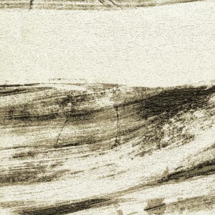 Rembrandt - SALICE