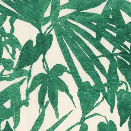 Home Jungle - GIUNGLA